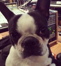 Boomy in her recording studio